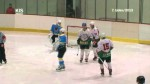 Závěrečné hokejové utkání před Play-off