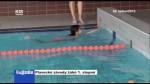 Plavecké závody žáků 1. stupně