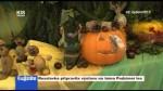 Resslovka připravila výstavu na téma Podzimní les