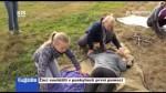 Žáci soutěžili v poskytnutí první pomoci