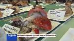 Historicky první výstava hub ve Studnicích
