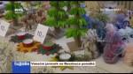 Vánoční jarmark na Resslovce pomáhá
