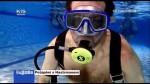 Potápění s Hastrmanem