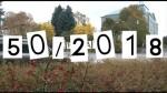 50/2018 Kompletní zpravodajství TV KIS Hlinsko
