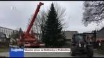 48/2019 Vánoční strom na Betlémě je z Podmoklan