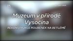 51/2020 Muzeum v přírodě Vysočina : Rekonstrukce roubenek na Betlémě