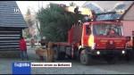 49/2020 Vánoční strom na Betlémě